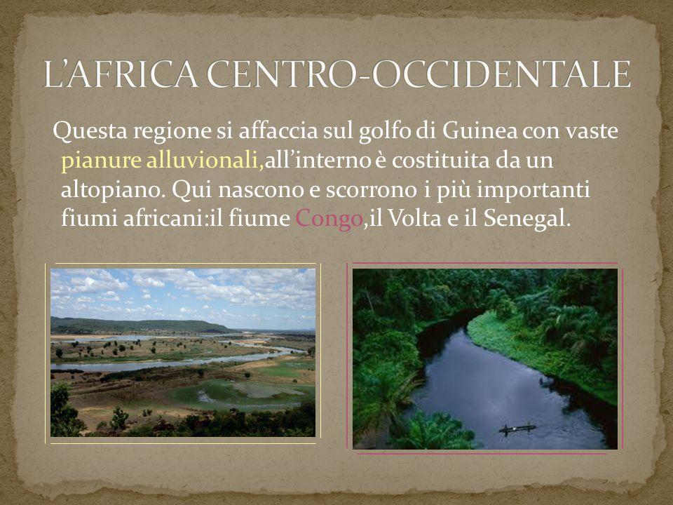 Questa regione si affaccia sul golfo di Guinea con vaste pianure alluvionali,all'interno è costituita da un altopiano. Qui nascono e scorrono i più im