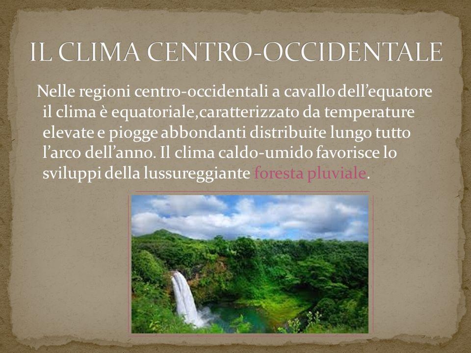Nelle regioni centro-occidentali a cavallo dell'equatore il clima è equatoriale,caratterizzato da temperature elevate e piogge abbondanti distribuite