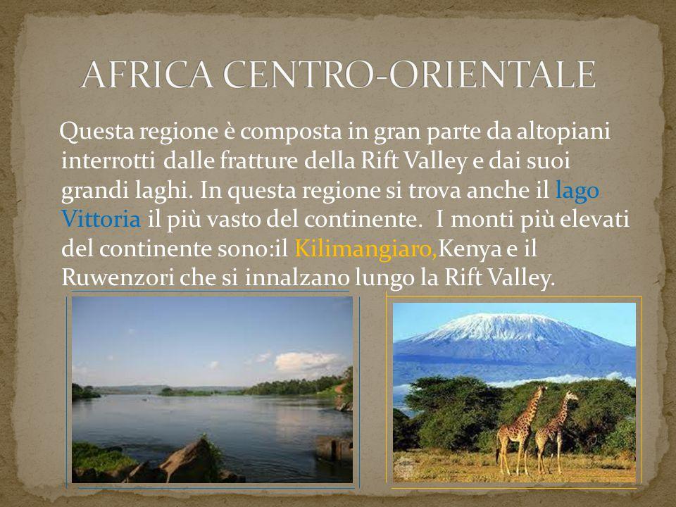 Questa regione è composta in gran parte da altopiani interrotti dalle fratture della Rift Valley e dai suoi grandi laghi. In questa regione si trova a