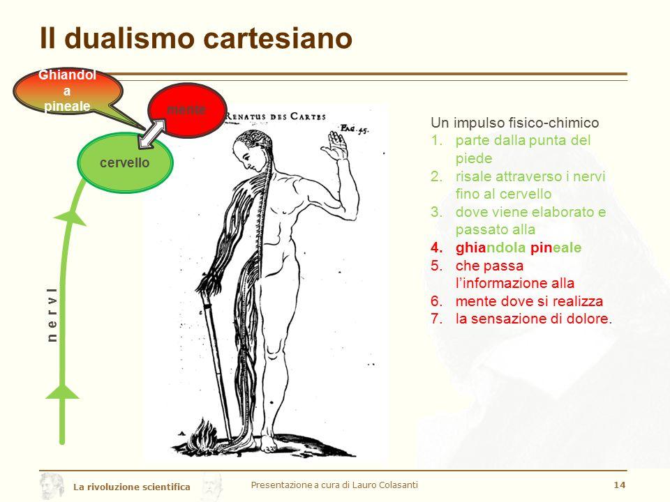La rivoluzione scientifica Il dualismo cartesiano Presentazione a cura di Lauro Colasanti14 Un impulso fisico-chimico 1.parte dalla punta del piede 2.