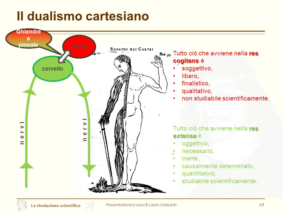 La rivoluzione scientifica Il dualismo cartesiano Presentazione a cura di Lauro Colasanti17 cervello nervi mente Ghiandol a pineale nervi res extensa