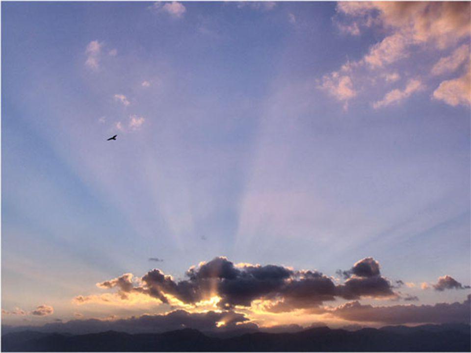Ma non basta saper volare con Te Signore: Tu mi hai dato il compito di abbracciare anche il fratello, e aiutarlo a volare.
