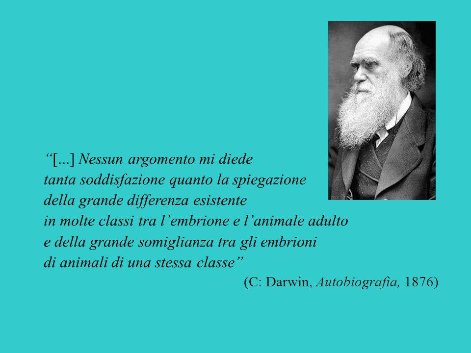 [...] Nessun argomento mi diede tanta soddisfazione quanto la spiegazione della grande differenza esistente in molte classi tra l'embrione e l'animale adulto e della grande somiglianza tra gli embrioni di animali di una stessa classe (C: Darwin, Autobiografia, 1876)