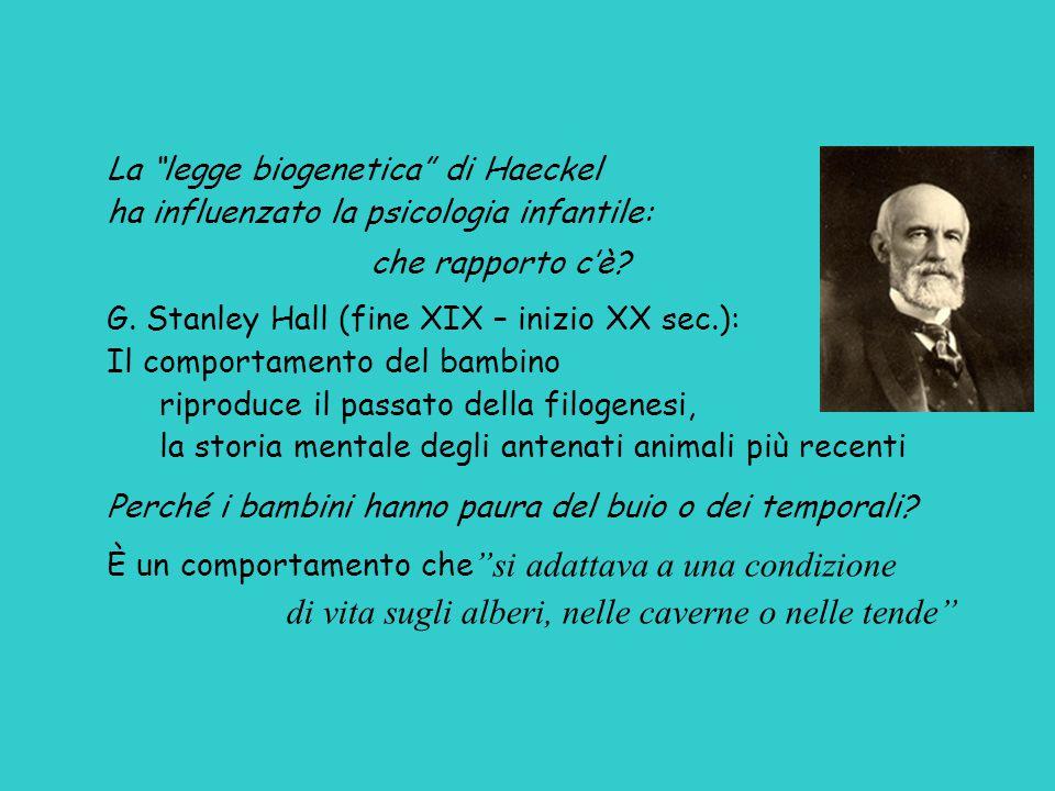La legge biogenetica di Haeckel ha influenzato la psicologia infantile: che rapporto c'è.
