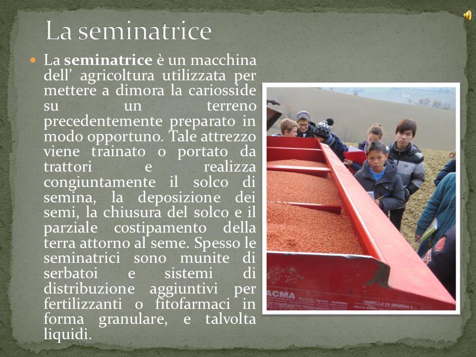 La seminatrice è un macchina dell' agricoltura utilizzata per mettere a dimora la cariosside su un terreno precedentemente preparato in modo opportuno
