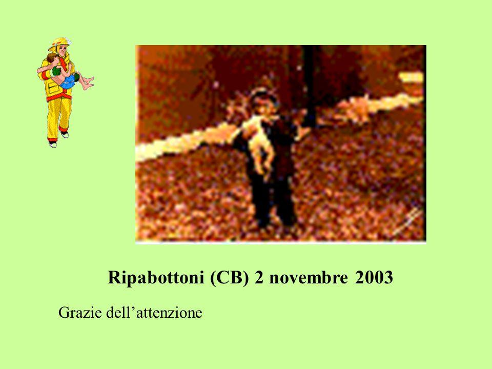 Ripabottoni (CB) 2 novembre 2003 Grazie dell'attenzione