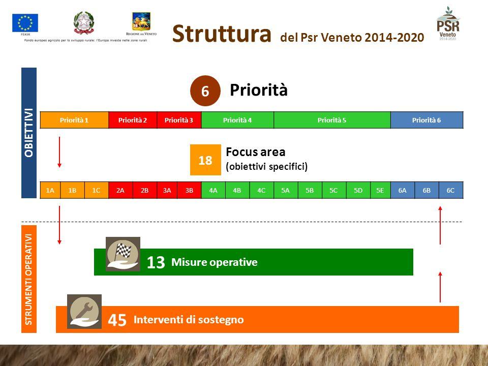 Struttura del Psr Veneto 2014-2020 Priorità 1Priorità 2Priorità 3Priorità 4Priorità 5Priorità 6 1A1B1C2A2B3A3B4A4B4C5A5B5C5D5E6A6B6C 18 Focus area (ob