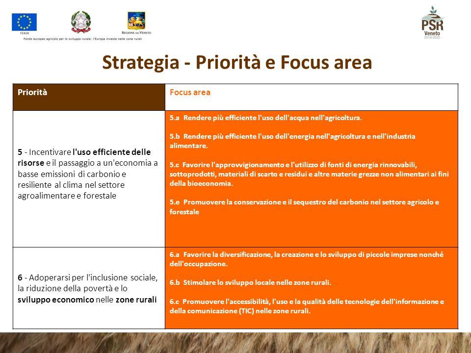 Strategia - Priorità e Focus area Priorità Focus area 5 - Incentivare l'uso efficiente delle risorse e il passaggio a un'economia a basse emissioni di