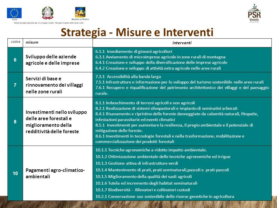 codice misure interventi 6 Sviluppo delle aziende agricole e delle imprese 6.1.1 Insediamento di giovani agricoltori 6.3.1 Avviamento di microimprese