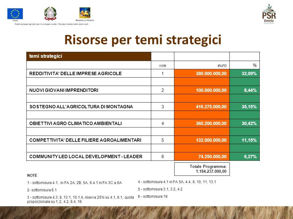 Risorse per temi strategici temi strategici note euro% REDDITIVITA' DELLE IMPRESE AGRICOLE1380.000.000,0032,09% NUOVI GIOVANI IMPRENDITORI2100.000.000