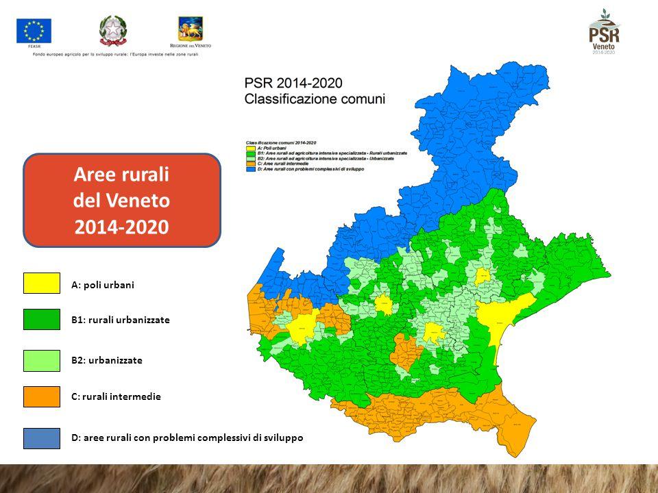 Aree rurali del Veneto 2014-2020 A: poli urbani B1: rurali urbanizzate B2: urbanizzate C: rurali intermedie D: aree rurali con problemi complessivi di