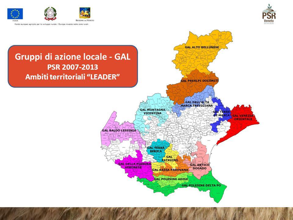 """Gruppi di azione locale - GAL PSR 2007-2013 Ambiti territoriali """"LEADER"""""""
