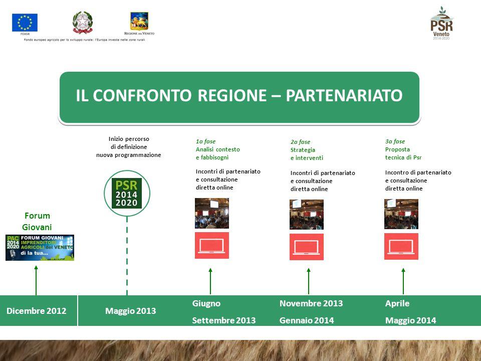 Dicembre 2012 Forum Giovani Giugno Settembre 2013 Inizio percorso di definizione nuova programmazione Incontri di partenariato e consultazione diretta
