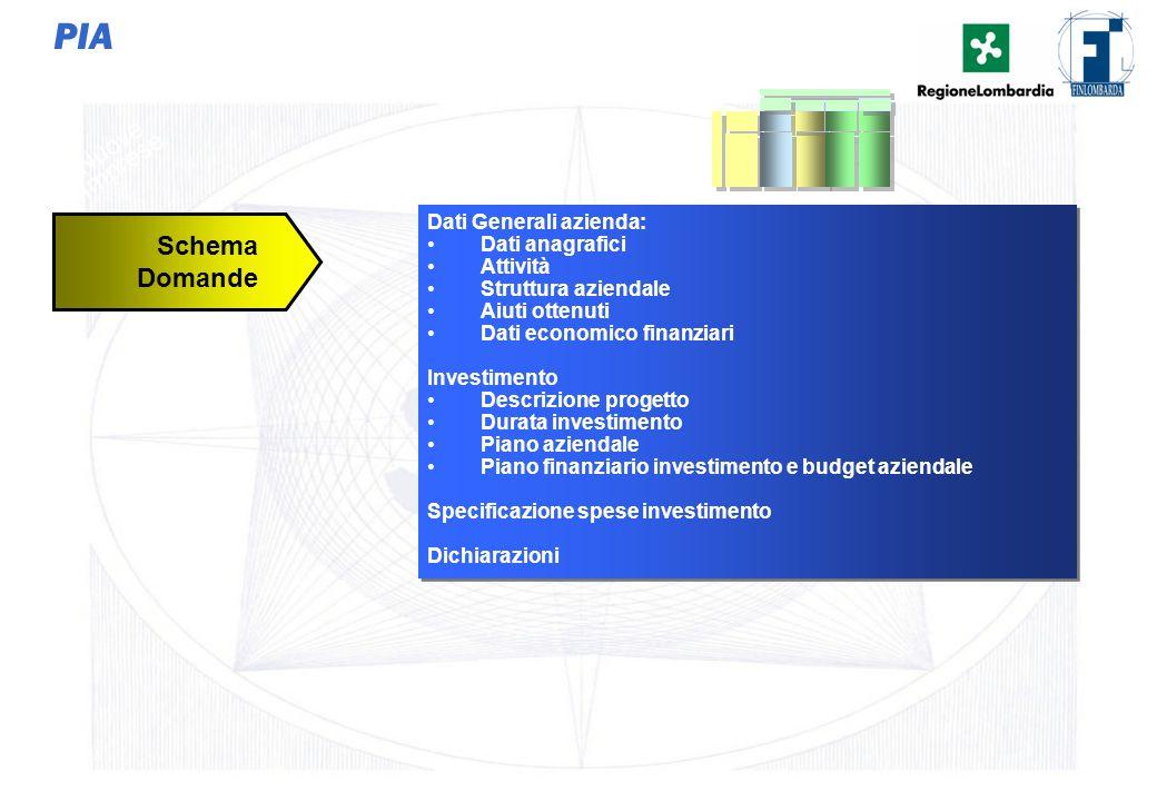 36 PIA Dati Generali azienda: Dati anagrafici Attività Struttura aziendale Aiuti ottenuti Dati economico finanziari Investimento Descrizione progetto