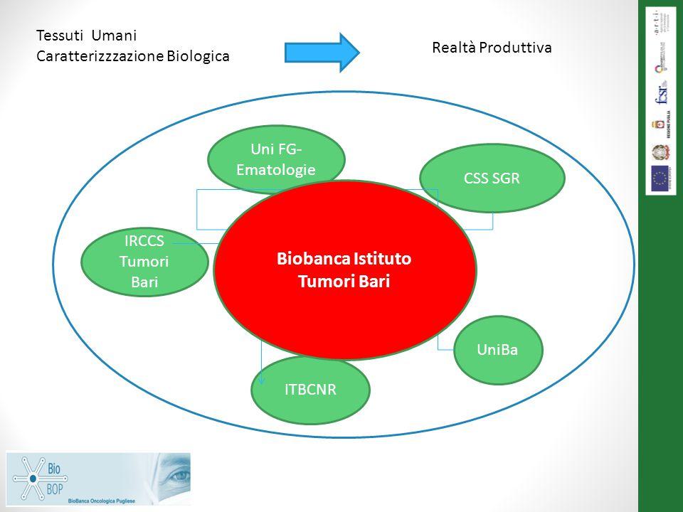 Uni FG- Ematologie CSS SGR UniBa ITBCNR IRCCS Tumori Bari BioBOP Tessuti Umani Caratterizzzazione Biologica Realtà Produttiva Biobanca Istituto Tumori Bari