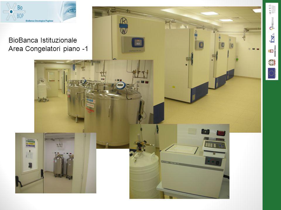 BioBanca Istituzionale Area Congelatori piano -1