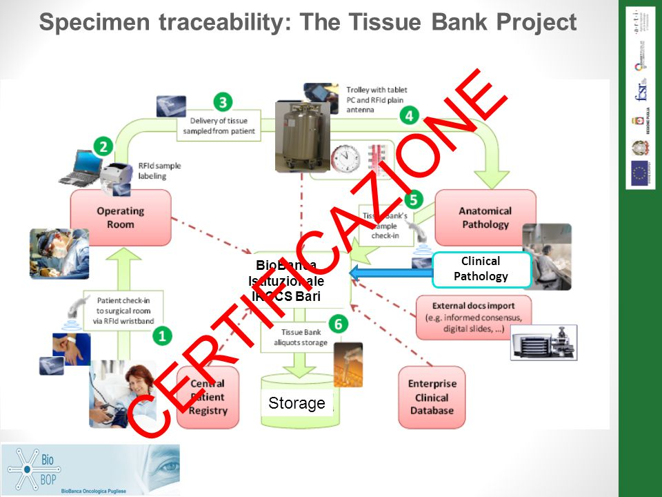 Specimen traceability: The Tissue Bank Project BioBanca Istituzionale IRCCS Bari Storage CERTIFICAZIONE Clinical Pathology