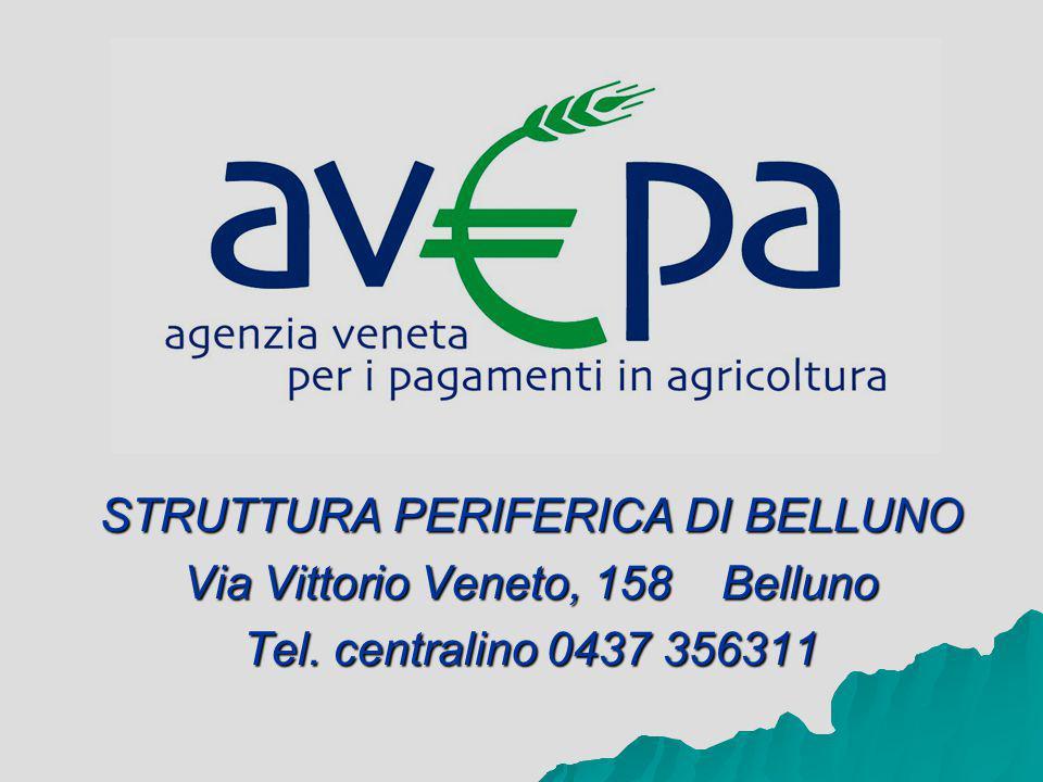 STRUTTURA PERIFERICA DI BELLUNO Via Vittorio Veneto, 158 Belluno Tel. centralino 0437 356311