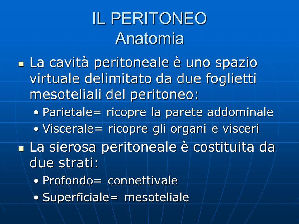 IL PERITONEO Anatomia La cavità peritoneale è uno spazio virtuale delimitato da due foglietti mesoteliali del peritoneo: La cavità peritoneale è uno spazio virtuale delimitato da due foglietti mesoteliali del peritoneo: Parietale= ricopre la parete addominaleParietale= ricopre la parete addominale Viscerale= ricopre gli organi e visceriViscerale= ricopre gli organi e visceri La sierosa peritoneale è costituita da due strati: La sierosa peritoneale è costituita da due strati: Profondo= connettivaleProfondo= connettivale Superficiale= mesotelialeSuperficiale= mesoteliale