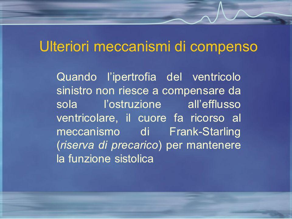 Ulteriori meccanismi di compenso Quando l'ipertrofia del ventricolo sinistro non riesce a compensare da sola l'ostruzione all'efflusso ventricolare, i