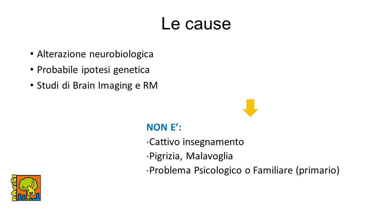Le cause Alterazione neurobiologica Probabile ipotesi genetica Studi di Brain Imaging e RM NON E': Cattivo insegnamento Pigrizia, Malavoglia Problema Psicologico o Familiare (primario)