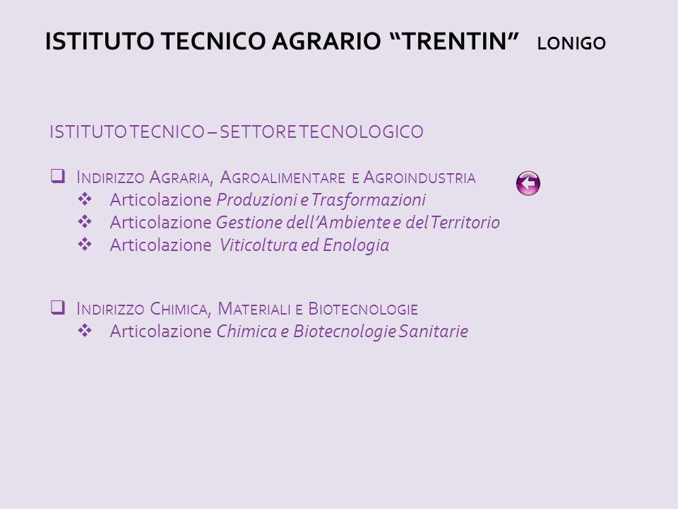 """ISTITUTO TECNICO AGRARIO """"TRENTIN"""" LONIGO ISTITUTO TECNICO – SETTORE TECNOLOGICO  I NDIRIZZO A GRARIA, A GROALIMENTARE E A GROINDUSTRIA  Articolazio"""