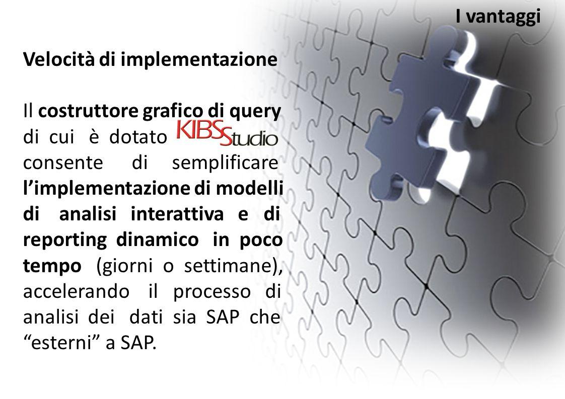 Velocità di implementazione Il costruttore grafico di query di cui è dotato consente di semplificare l'implementazione di modelli di analisi interatti