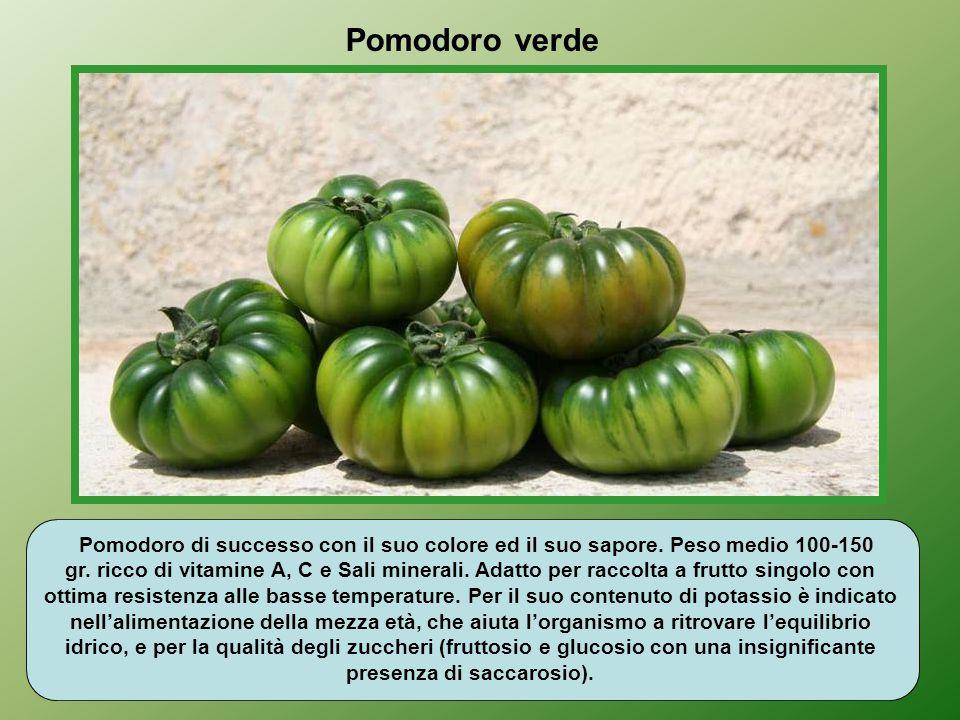 Il pomodoro ha notevolissimi vantaggi che non si fermano al licopene (sostanza antiossidante); ma è un alimento leggero, rimineralizzante, dissetante,