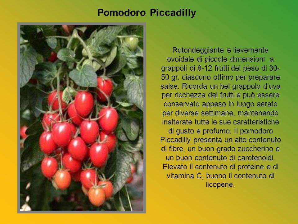 Sfogliata di pomodorini