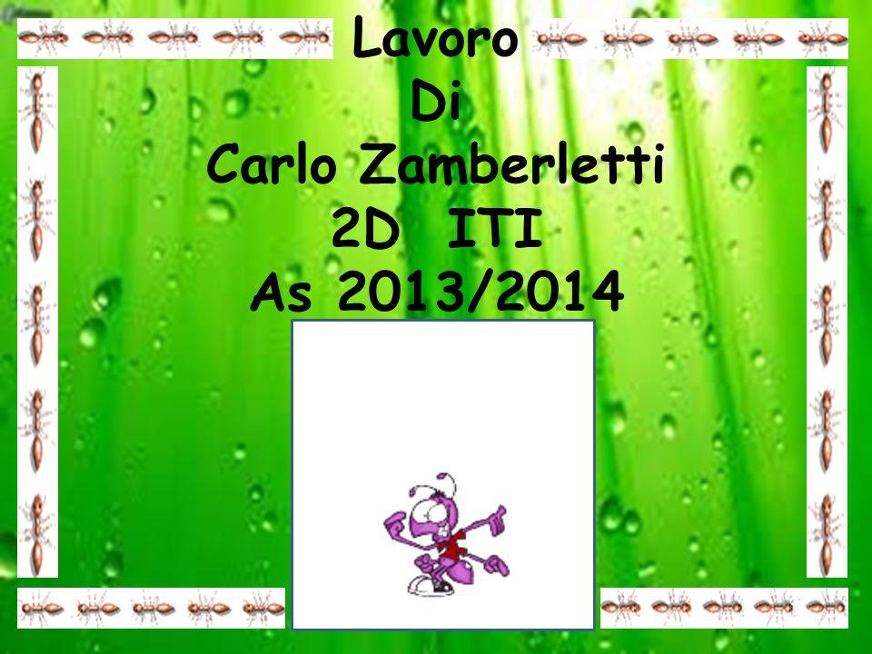 Lavoro Di Carlo Zamberletti 2D ITI As 2013/2014