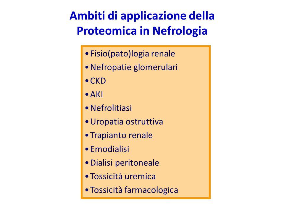 Ambiti di applicazione della Proteomica in Nefrologia Fisio(pato)logia renale Nefropatie glomerulari CKD AKI Nefrolitiasi Uropatia ostruttiva Trapiant