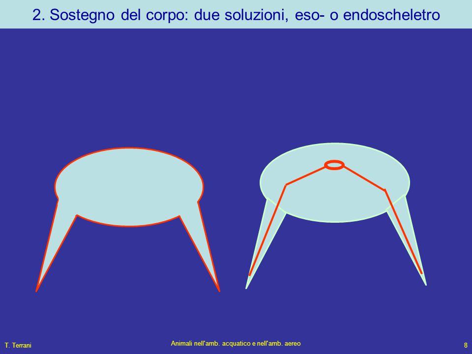T. Terrani Animali nell'amb. acquatico e nell'amb. aereo 8 2. Sostegno del corpo: due soluzioni, eso- o endoscheletro