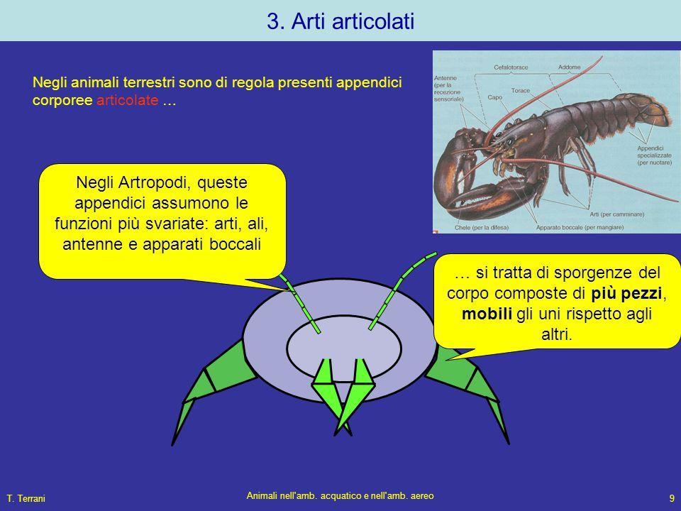 T. Terrani Animali nell'amb. acquatico e nell'amb. aereo 9 3. Arti articolati Negli animali terrestri sono di regola presenti appendici corporee artic