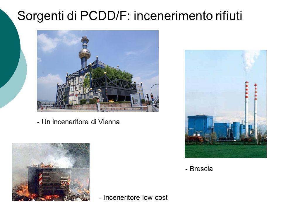 Sorgenti di PCDD/F: incenerimento rifiuti - Brescia - Inceneritore low cost - Un inceneritore di Vienna