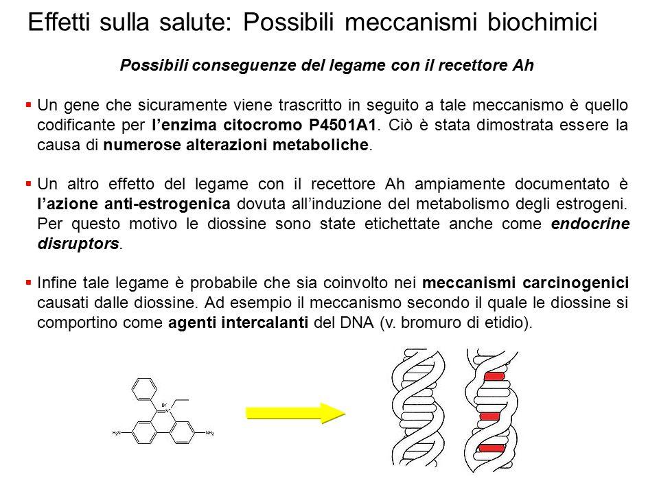 Possibili conseguenze del legame con il recettore Ah  Un gene che sicuramente viene trascritto in seguito a tale meccanismo è quello codificante per