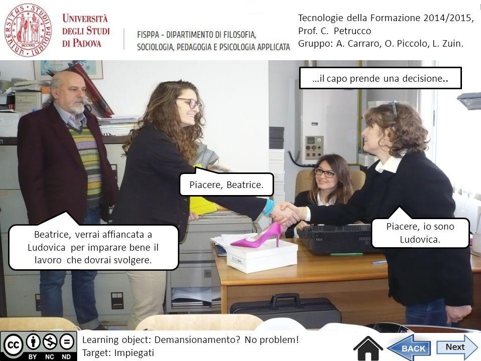Tecnologie della Formazione 2014/2015, Prof.C. Petrucco Gruppo: A.