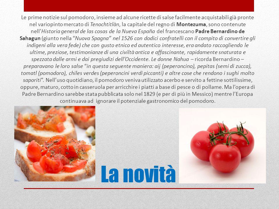 La novità Le prime notizie sul pomodoro, insieme ad alcune ricette di salse facilmente acquistabili già pronte nel variopinto mercato di Tenochtitlàn,