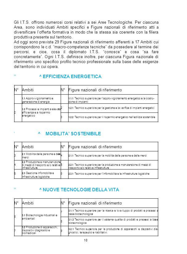 Gli I.T.S. offrono numerosi corsi relativi a sei Aree Tecnologiche. Per ciascuna Area, sono individuati Ambiti specifici e Figure nazionali di riferim