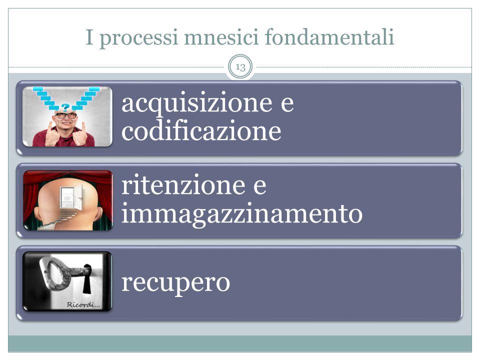 I processi mnesici fondamentali acquisizione e codificazione ritenzione e immagazzinamento recupero 13