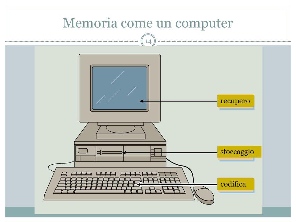 Memoria come un computer codifica stoccaggio recupero 14