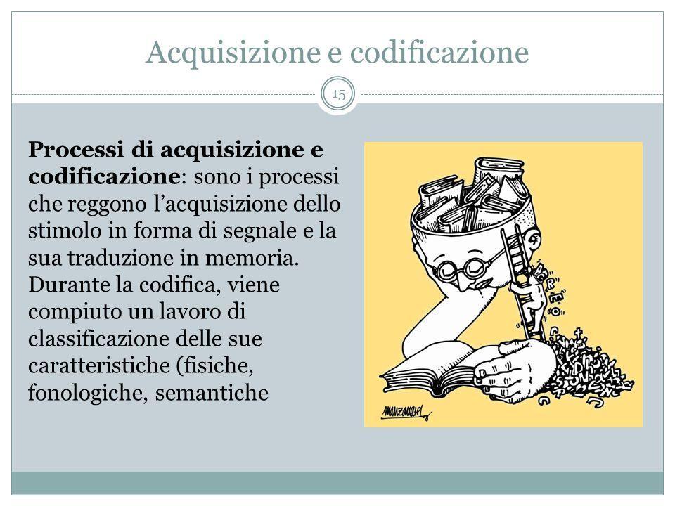 Acquisizione e codificazione Processi di acquisizione e codificazione: sono i processi che reggono l'acquisizione dello stimolo in forma di segnale e