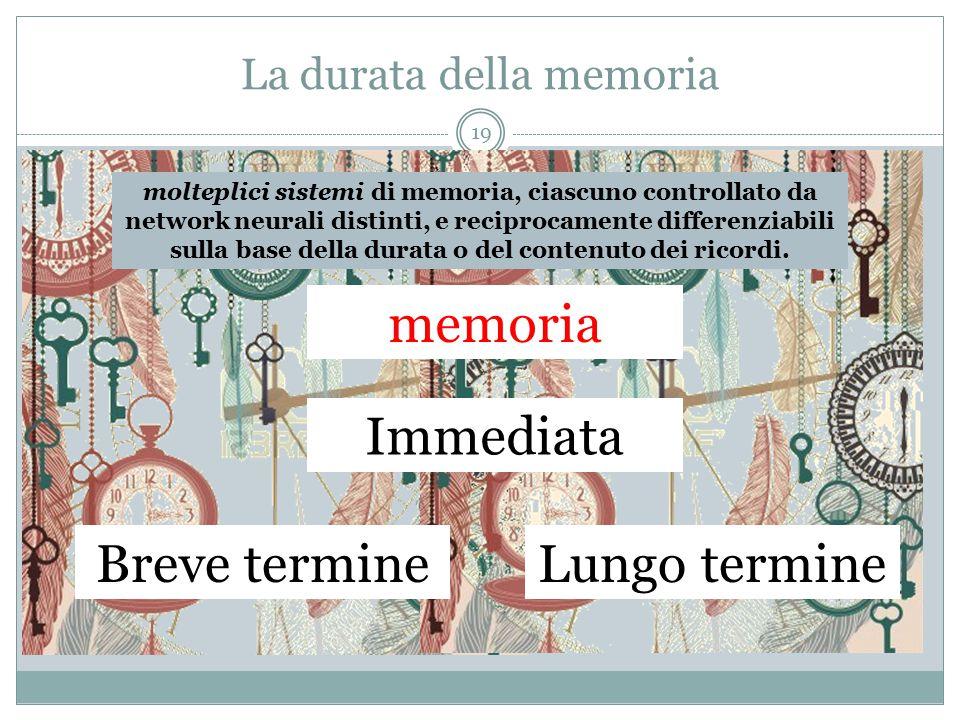 La durata della memoria molteplici sistemi di memoria, ciascuno controllato da network neurali distinti, e reciprocamente differenziabili sulla base d