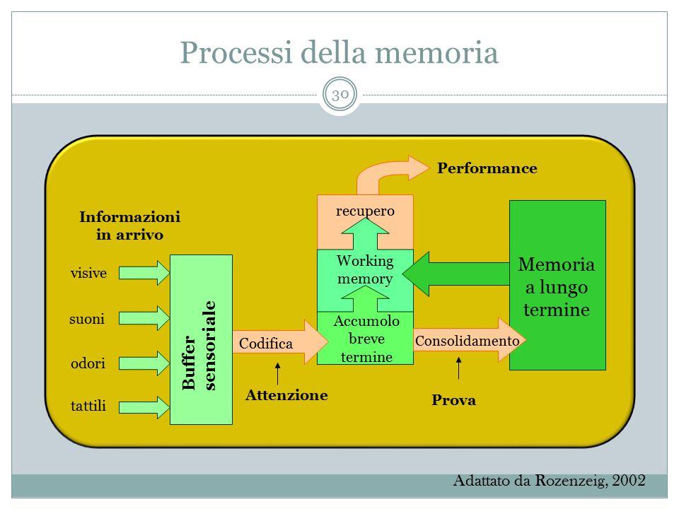 Processi della memoria Informazioni in arrivo Performance recupero Working memory Accumolo breve termine Codifica Memoria a lungo termine Consolidamen