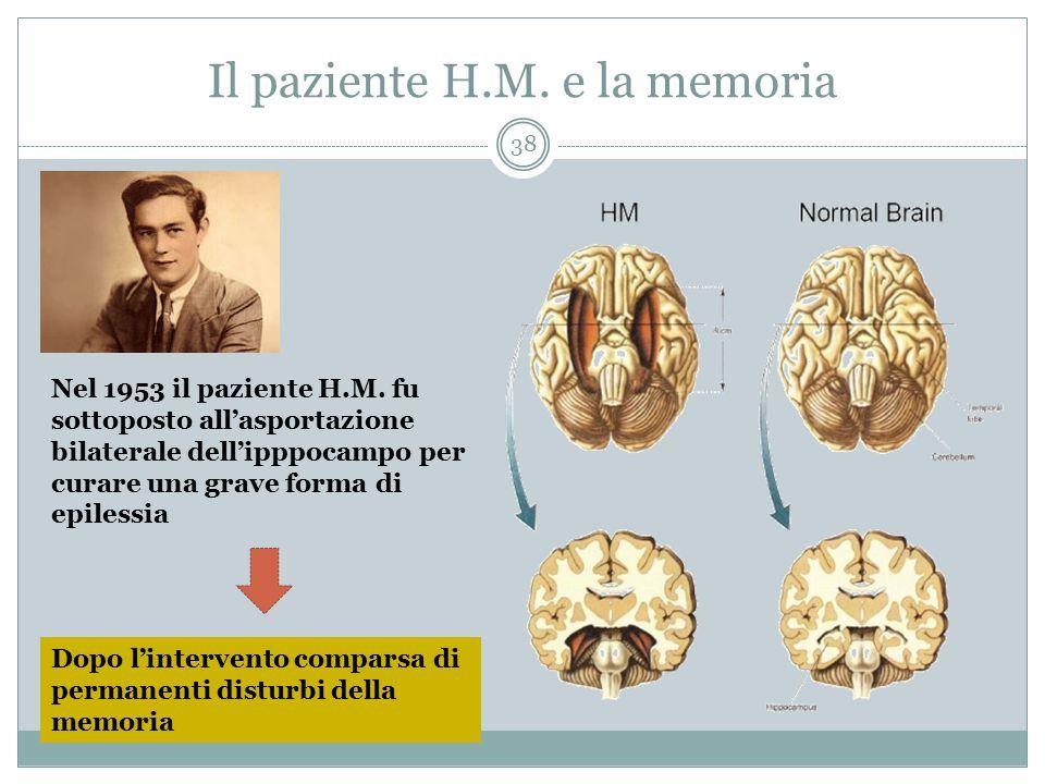 Il paziente H.M. e la memoria Nel 1953 il paziente H.M. fu sottoposto all'asportazione bilaterale dell'ipppocampo per curare una grave forma di epiles