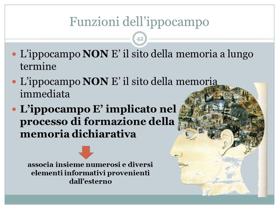 Funzioni dell'ippocampo L'ippocampo NON E' il sito della memoria a lungo termine L'ippocampo NON E' il sito della memoria immediata L'ippocampo E' imp