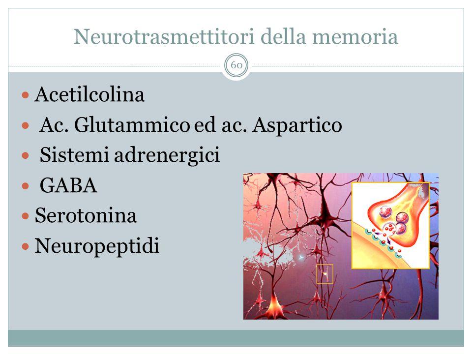 Neurotrasmettitori della memoria Acetilcolina Ac. Glutammico ed ac. Aspartico Sistemi adrenergici GABA Serotonina Neuropeptidi 60