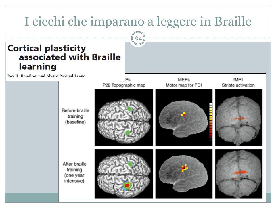 I ciechi che imparano a leggere in Braille 64