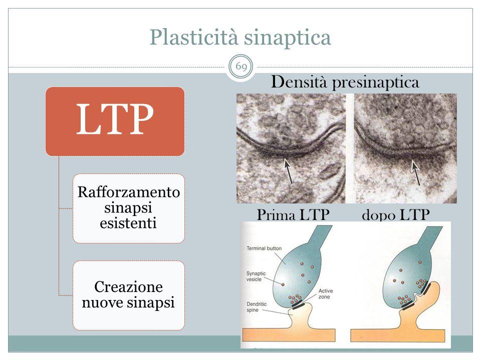 Plasticità sinaptica Densità presinaptica Prima LTPdopo LTP LTP Rafforzamento sinapsi esistenti Creazione nuove sinapsi 69