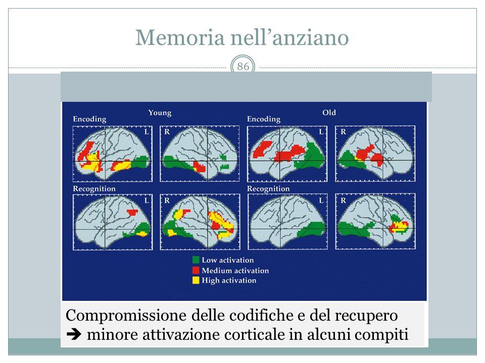 Memoria nell'anziano Compromissione delle codifiche e del recupero  minore attivazione corticale in alcuni compiti 86