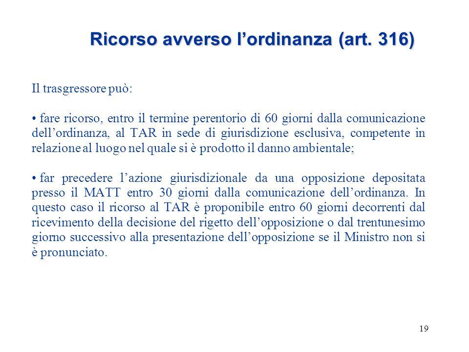 19 Ricorso avverso l'ordinanza (art. 316) Il trasgressore può: fare ricorso, entro il termine perentorio di 60 giorni dalla comunicazione dell'ordinan